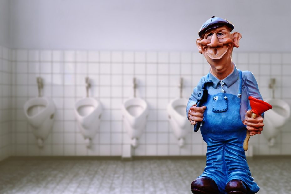 What do plumbers think about the plumbing profession in the next 10 years?